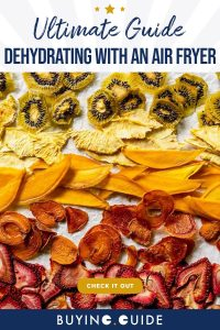 Dehydrating with an Air Fryer